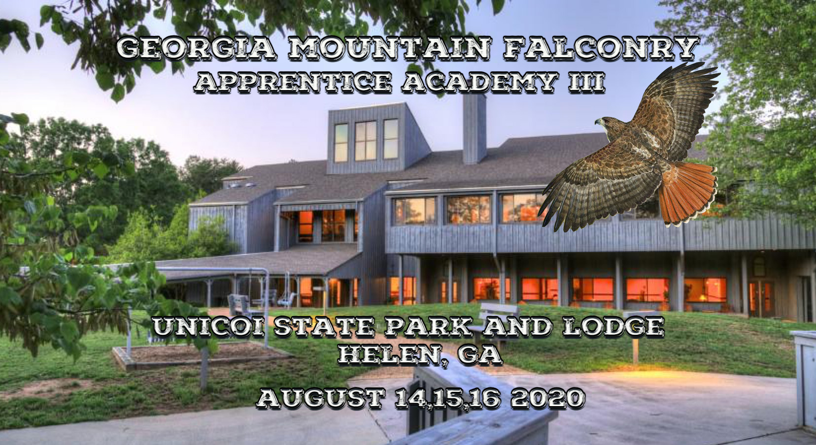 Georgia Mountain Falconry