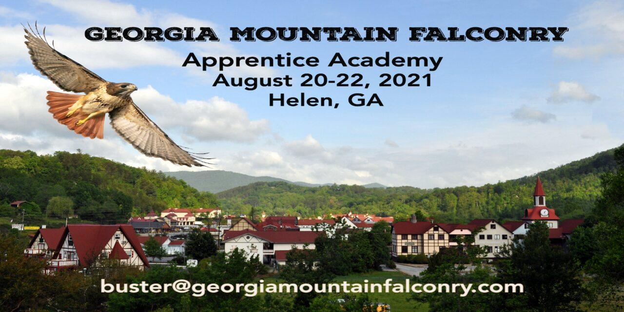 Georgia Mountain Falconry